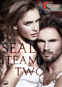seal-team-two-2-ebook